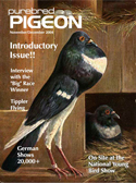First Issue of Purebred Pigeon