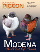 Cover of our March/April 2009 issue